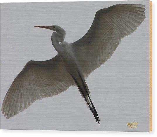 Snowy Egret Wings Of An Angel Wood Print