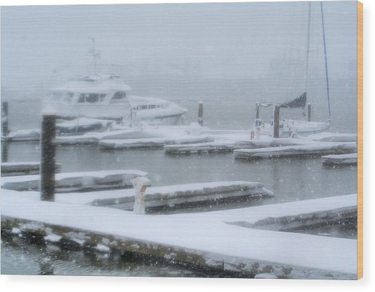 Snowy Harbor Wood Print