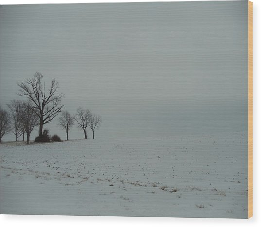 Snowy Illinois Field Wood Print