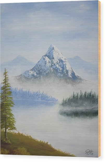 Snowy Landscape Wood Print by Christian  Hidalgo