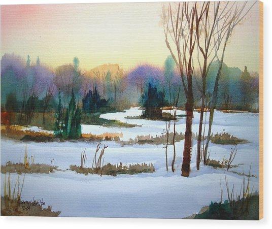 Snowy Landscape Scene Wood Print by Larry Hamilton