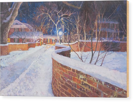 Snowy Night At The Serpentine Wall Wood Print