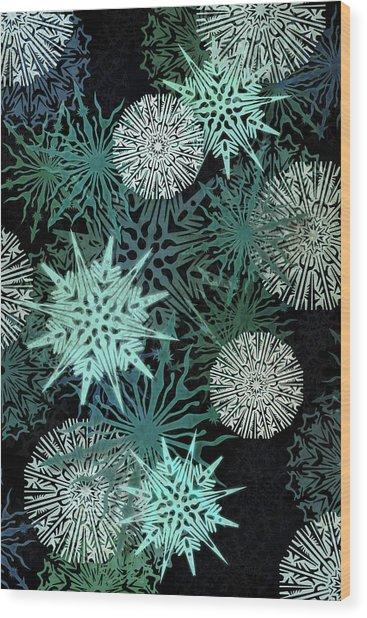 Snowy Night Wood Print