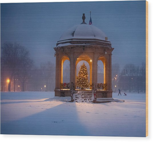 Snowy Night On The Salem Common Wood Print