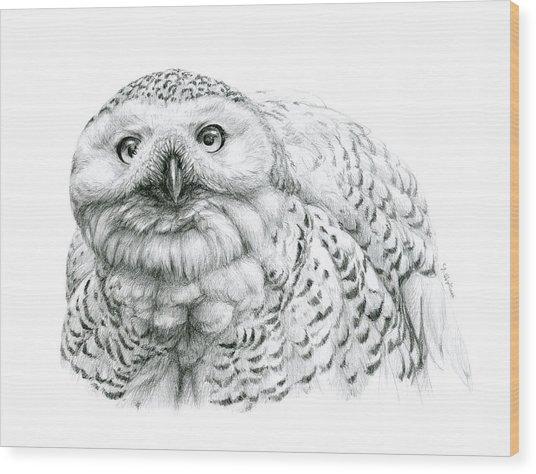 Snowy Owl -bubo Scandiacus Wood Print by Svetlana Ledneva-Schukina