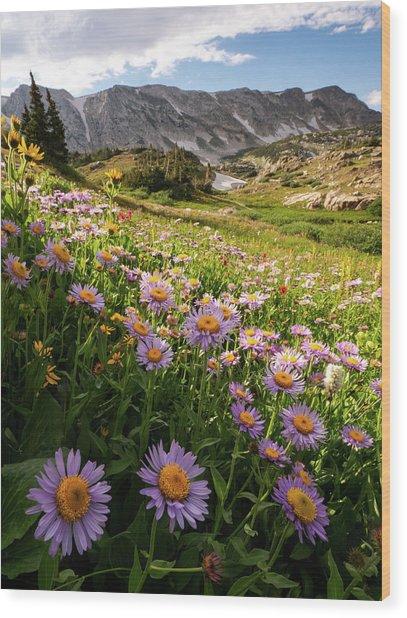 Snowy Range Flowers Wood Print
