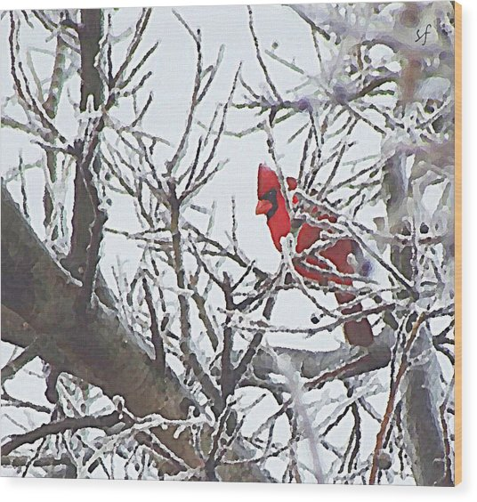 Wood Print featuring the digital art Snowy Red Bird A Cardinal In Winter by Shelli Fitzpatrick