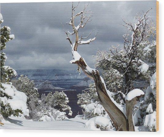 Snowy View Wood Print