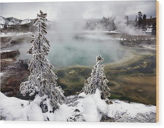 Snowy Yellowstone Wood Print