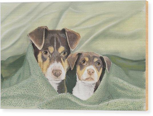 Snuggle Buddies Wood Print by Barbara Keel