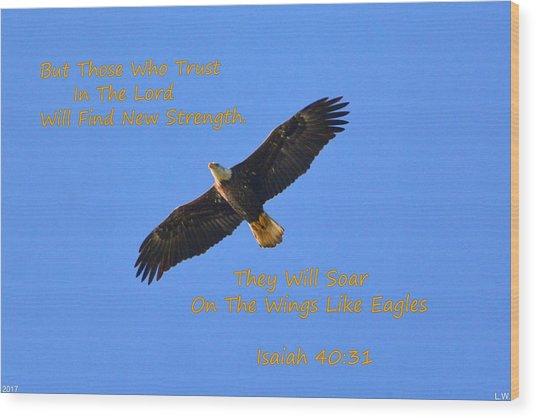 Soar On The Wings Like Eagles Isaiah 40 31  Wood Print