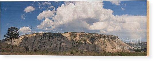 Soaring Above Mount Everts Wood Print