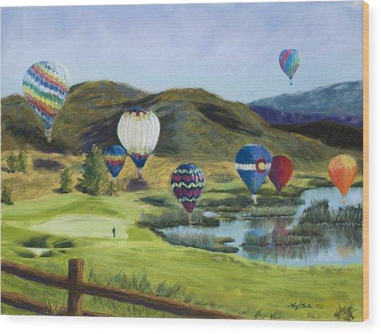 Soaring Over Colorado Wood Print