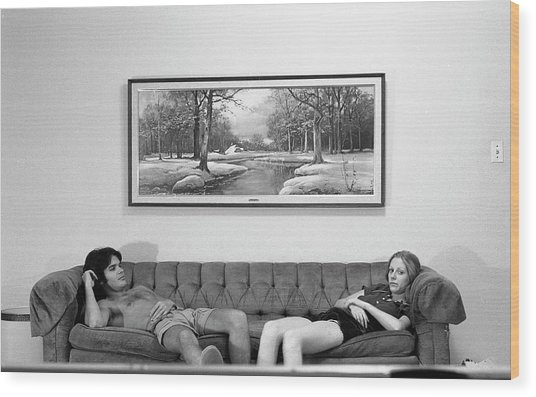 Sofa-sized Picture, With Light Switch, 1973 Wood Print