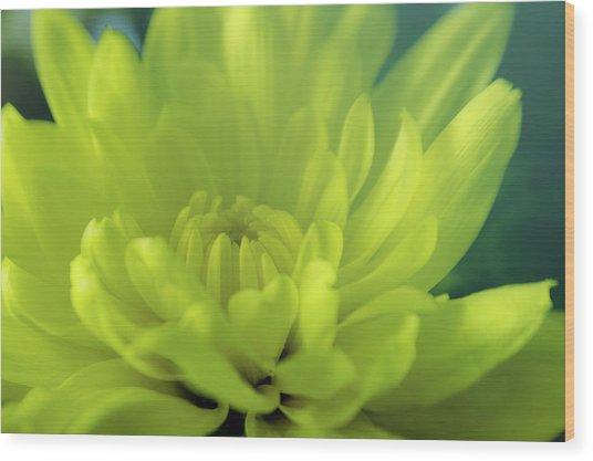 Soft Center Wood Print