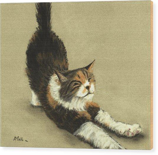 Wood Print featuring the painting Soft Kitty by Anastasiya Malakhova