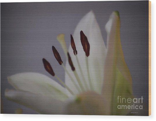 Soft Lily Wood Print
