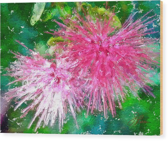 Soft Pink Flower Wood Print