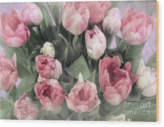 Soft Pink Tulips Wood Print