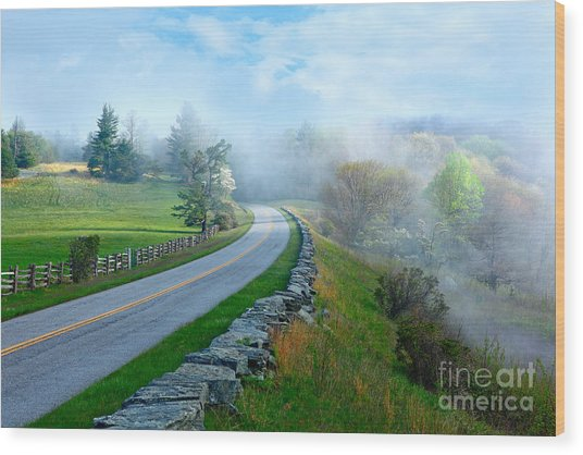 Soft Spring Morning On Blue Ridge Parkway I Wood Print