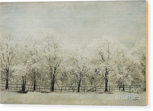 Softly Falling Snow Wood Print