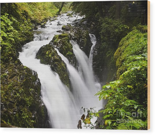 Sol Duc  Falls Washington Usa Wood Print
