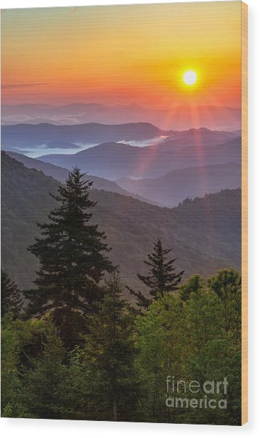 Solar Wood Print