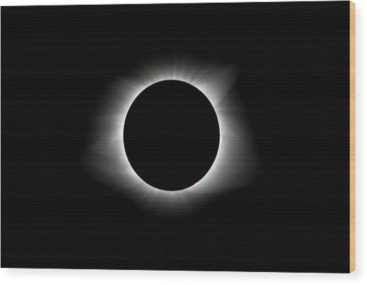 Solar Eclipse Ring Of Fire Wood Print