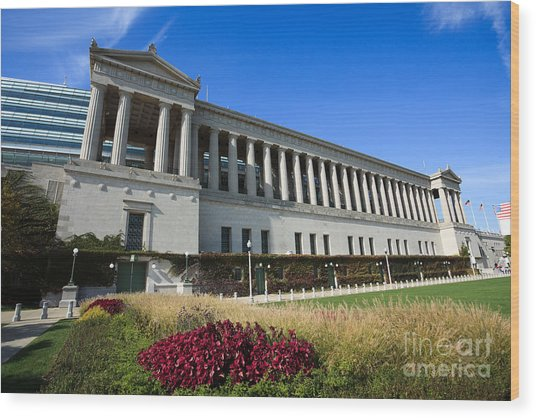 Soldier Field Chicago Bears Stadium Wood Print