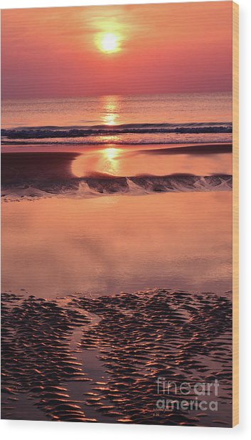 Solemn Reflection Wood Print