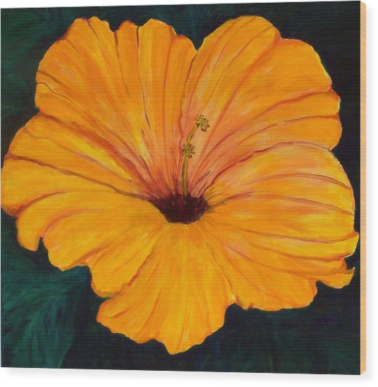 Solid Gold Wood Print by Marcia Paige