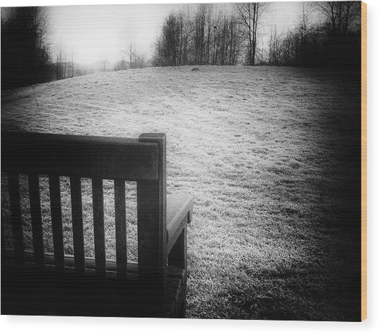 Solitary Bench In Winter Wood Print
