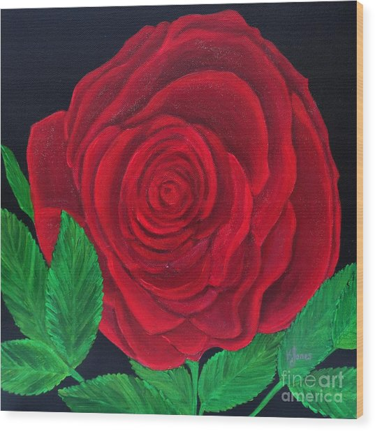 Solitary Red Rose Wood Print