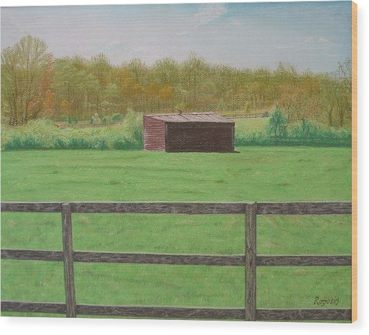 Solitary Shed Wood Print