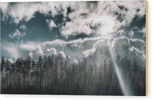 Wood Print featuring the photograph Solitude Forest. Sunychne, 2016. by Andriy Maykovskyi