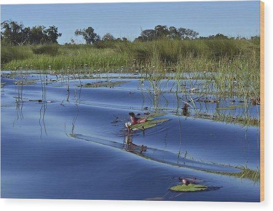 Solitude In The Okavango Wood Print