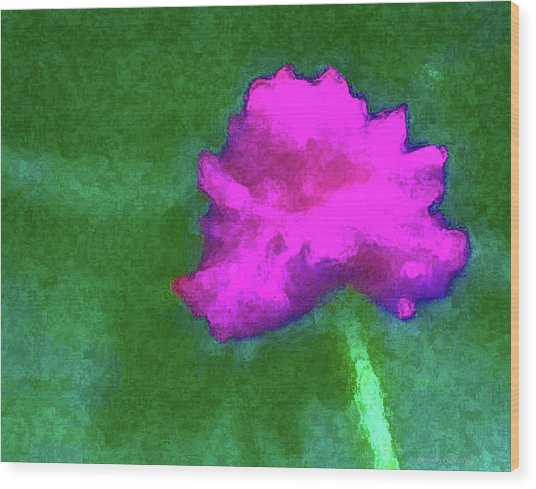 Solo Flower Wood Print