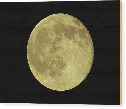 Solstice Moon Wood Print