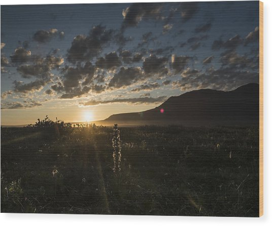 Solstice On The Slope Wood Print