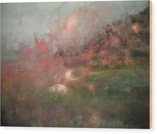 Sometime In Spring Wood Print by Anita Stoll