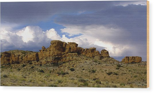 Somewhere Out West Wood Print by Ralph  Perdomo