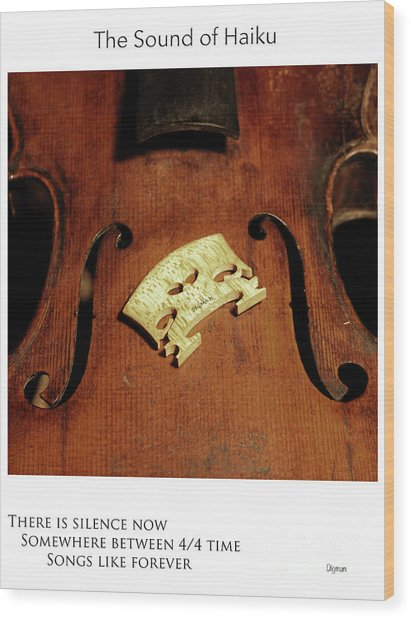 Songs Like Forever  Wood Print by Steven Digman