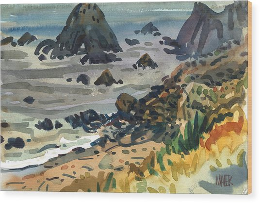 Sonoma Coast Wood Print by Donald Maier
