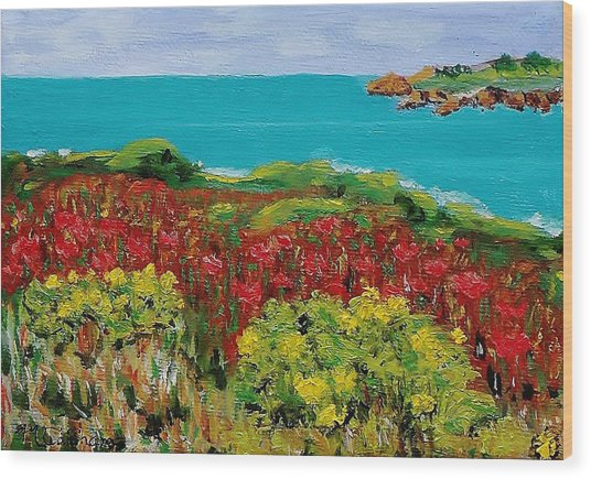 Sonoma Coast With Wildflowers Wood Print