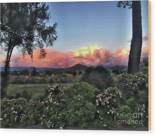 Sonoma County Sunsets Wood Print