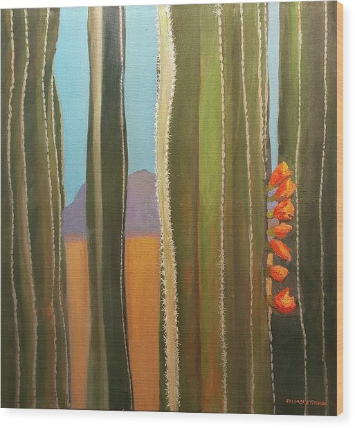 Sonoran Desert Cactus Reds Wood Print