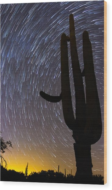 Sonoran Startrails - Reaching For The Stars Wood Print
