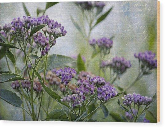 Sophies Garden Wood Print