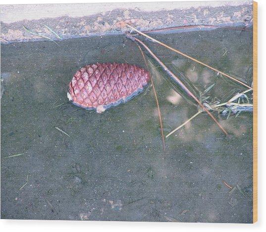 Sorrow Floats Wood Print by Kevin Callahan