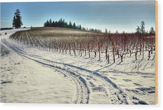 Soter Vineyard Winter Wood Print